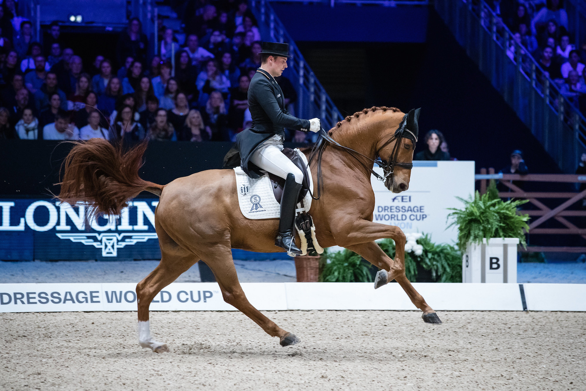 Tips To Help When Your Horse Is Running Into Canter