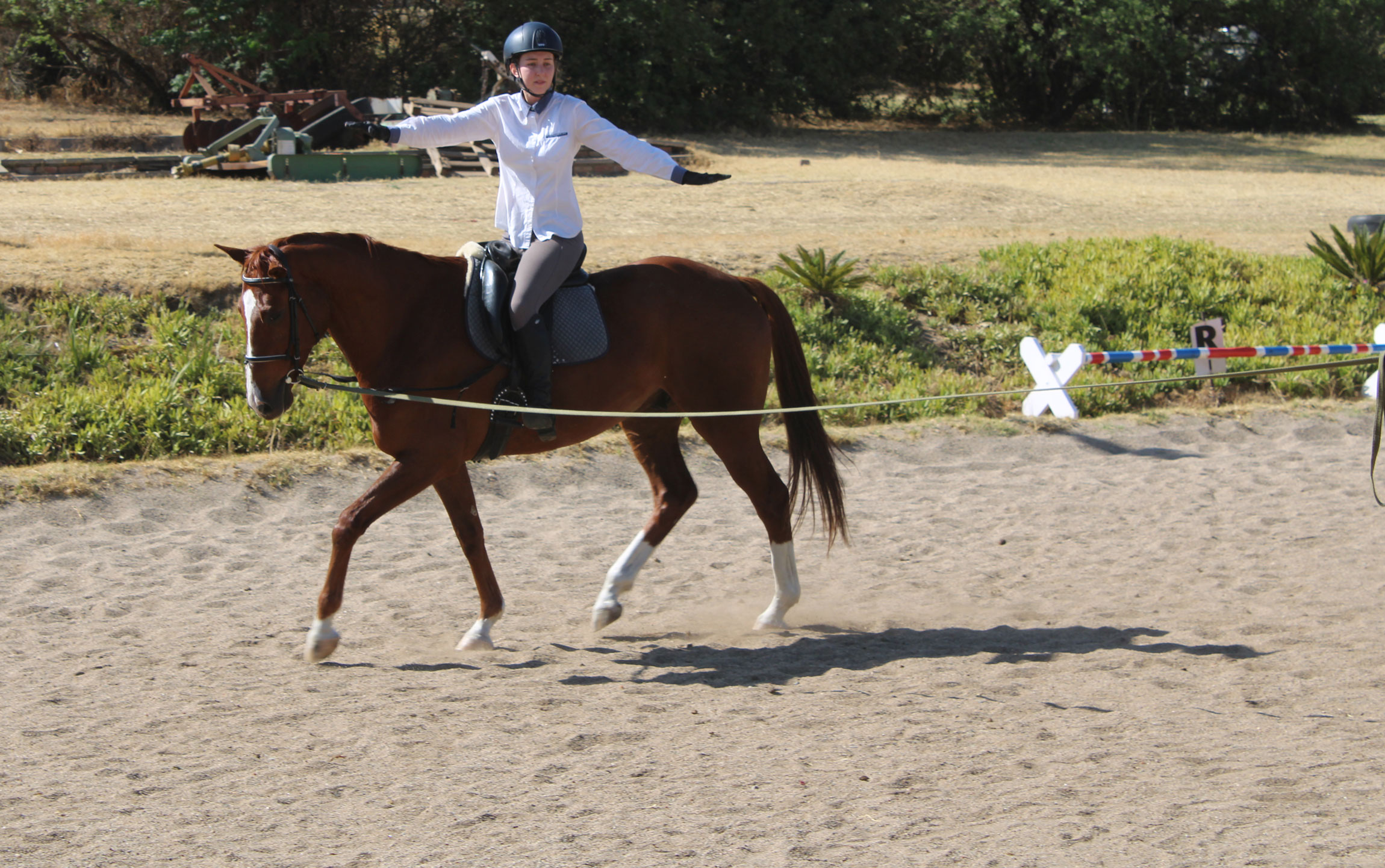 6 Tips To Improve Your Seat With Lunge Lessons