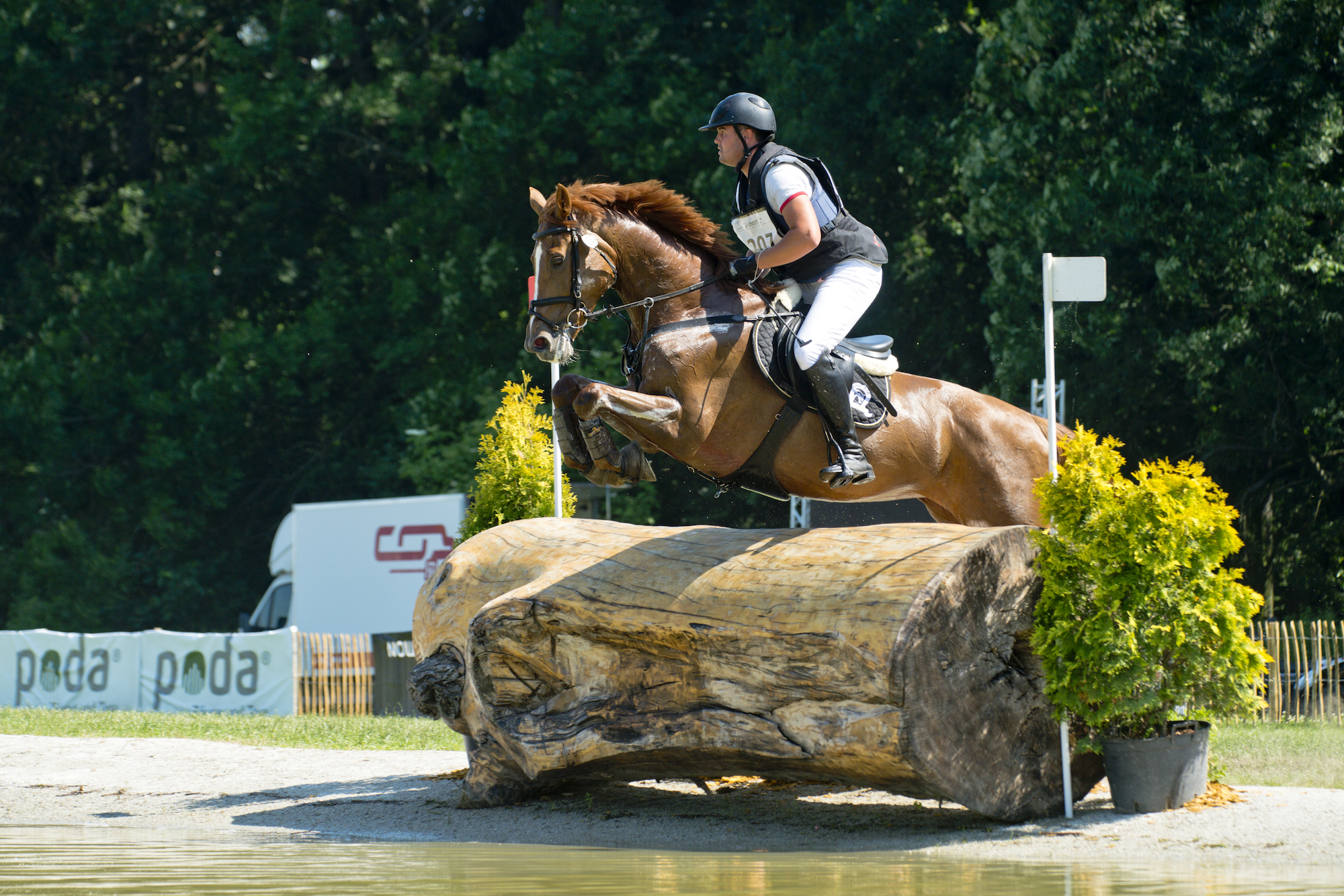Eventing 2017 Looking At Strzegom