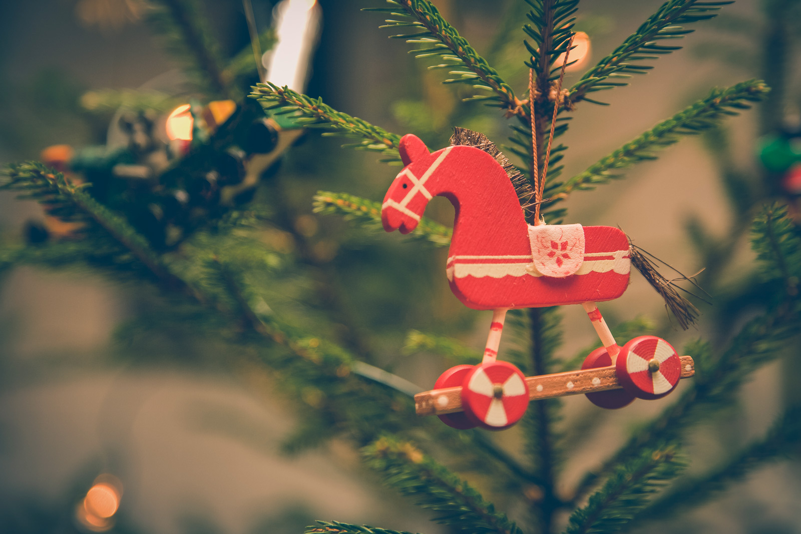10 Christmas Gift Ideas For Horse Lovers