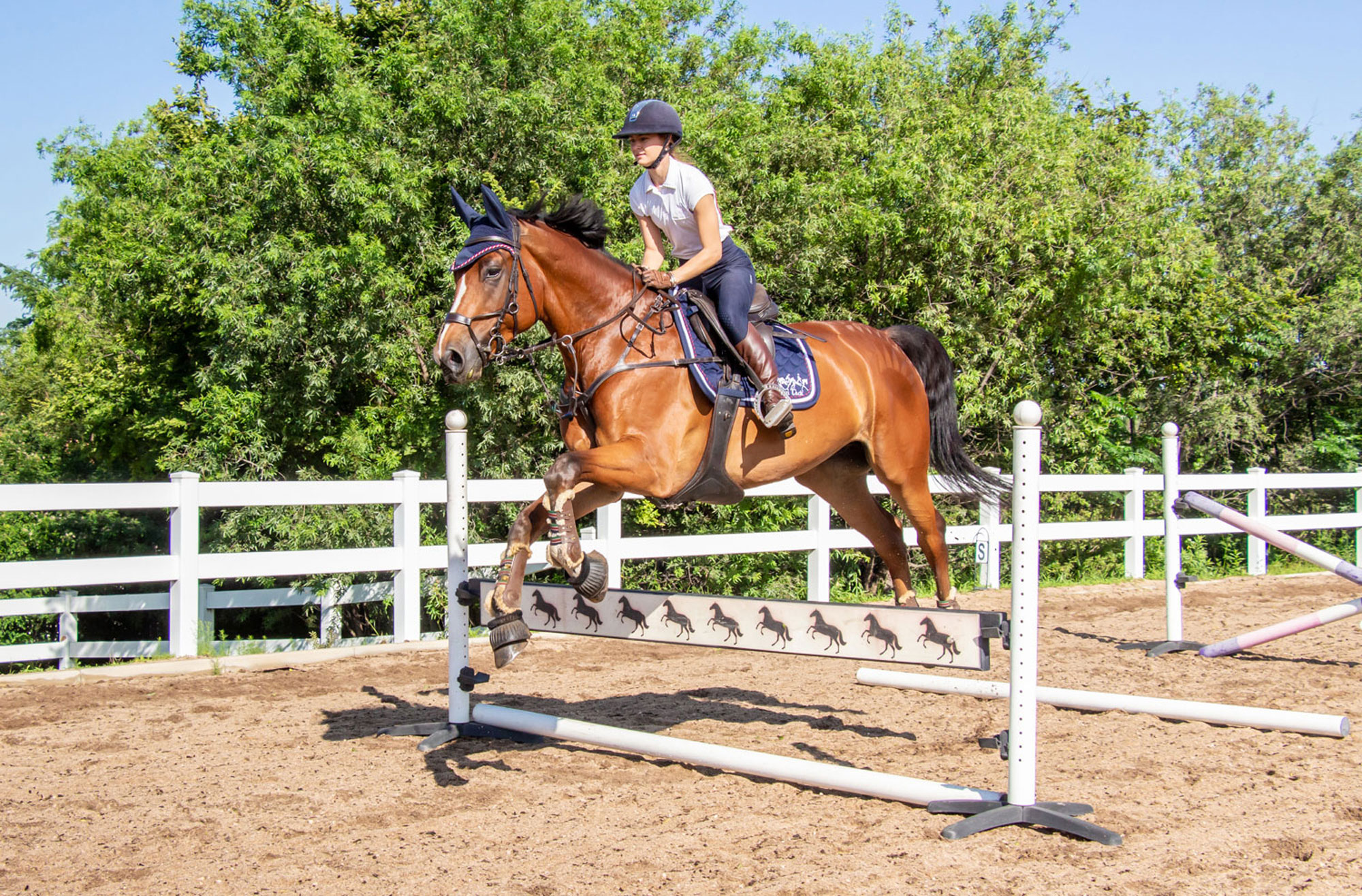 3 Simple Tips To Help A Horse Who Rushes
