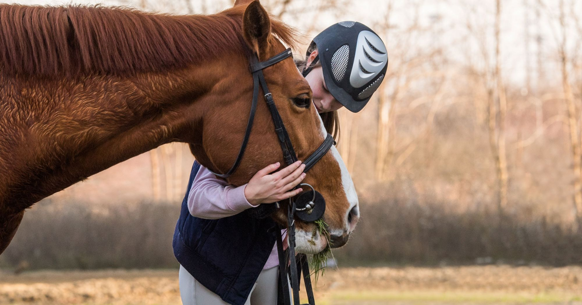 3 Exercises To Calm Down Your Hot Horse