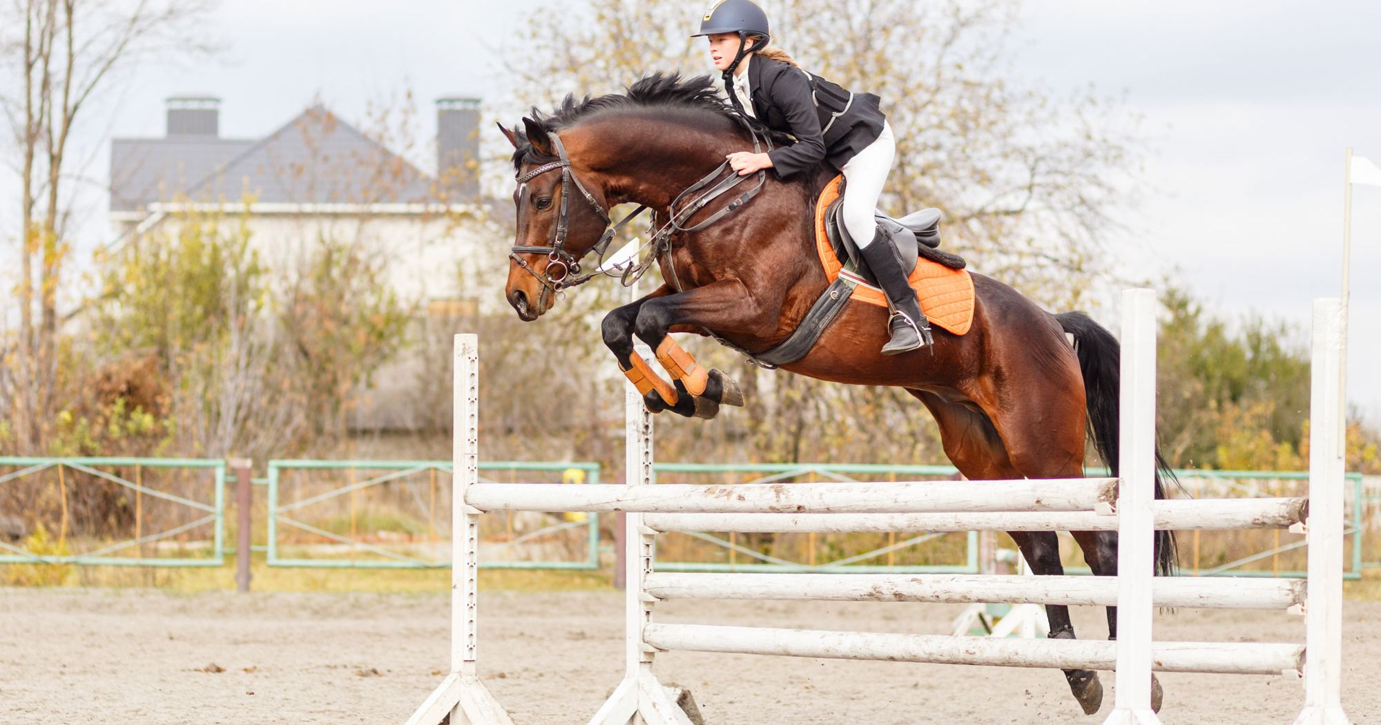 5 Tips On Moving Up A Jumping Level
