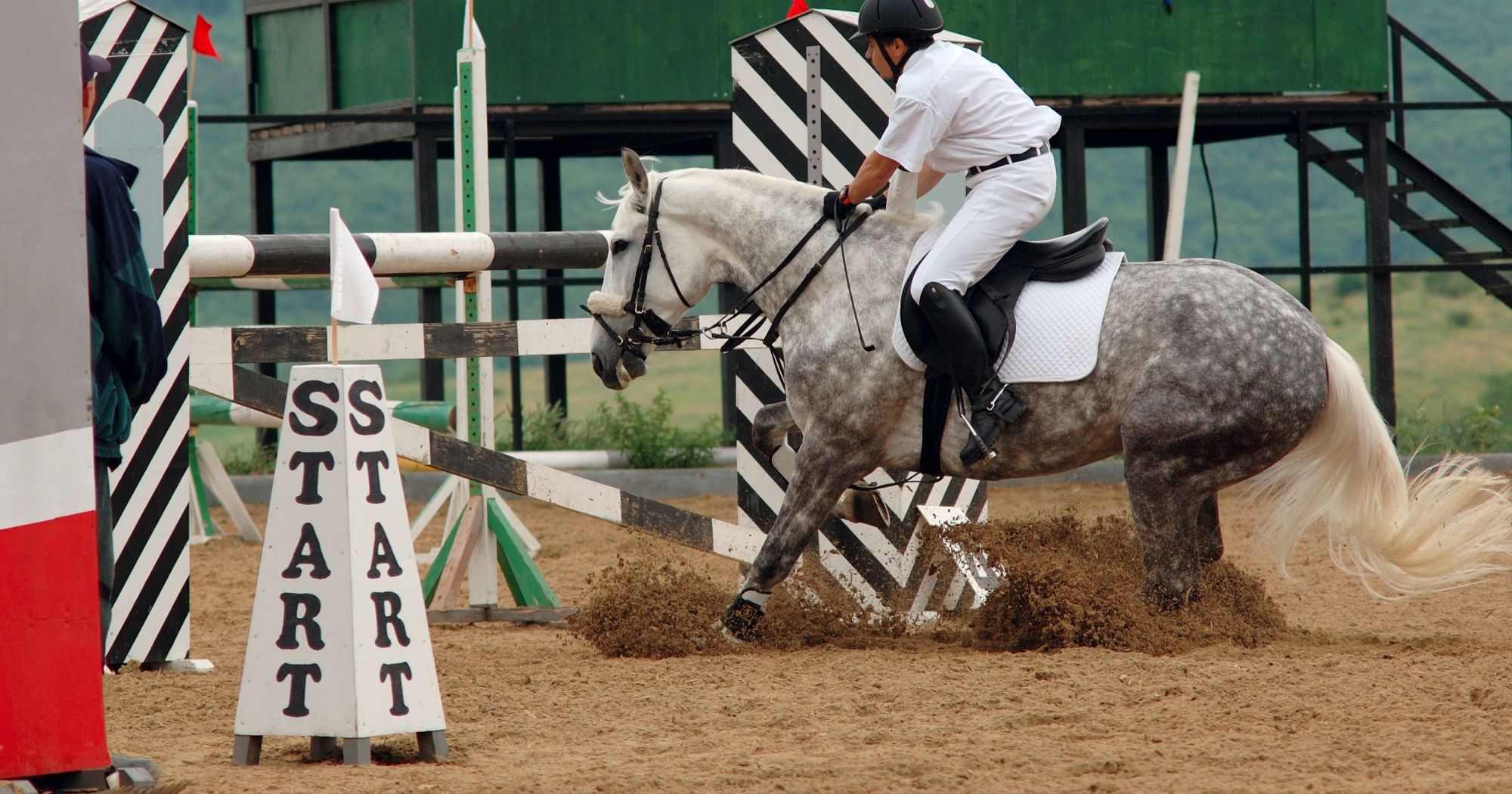Help My Horse Is Stopping At Jumps