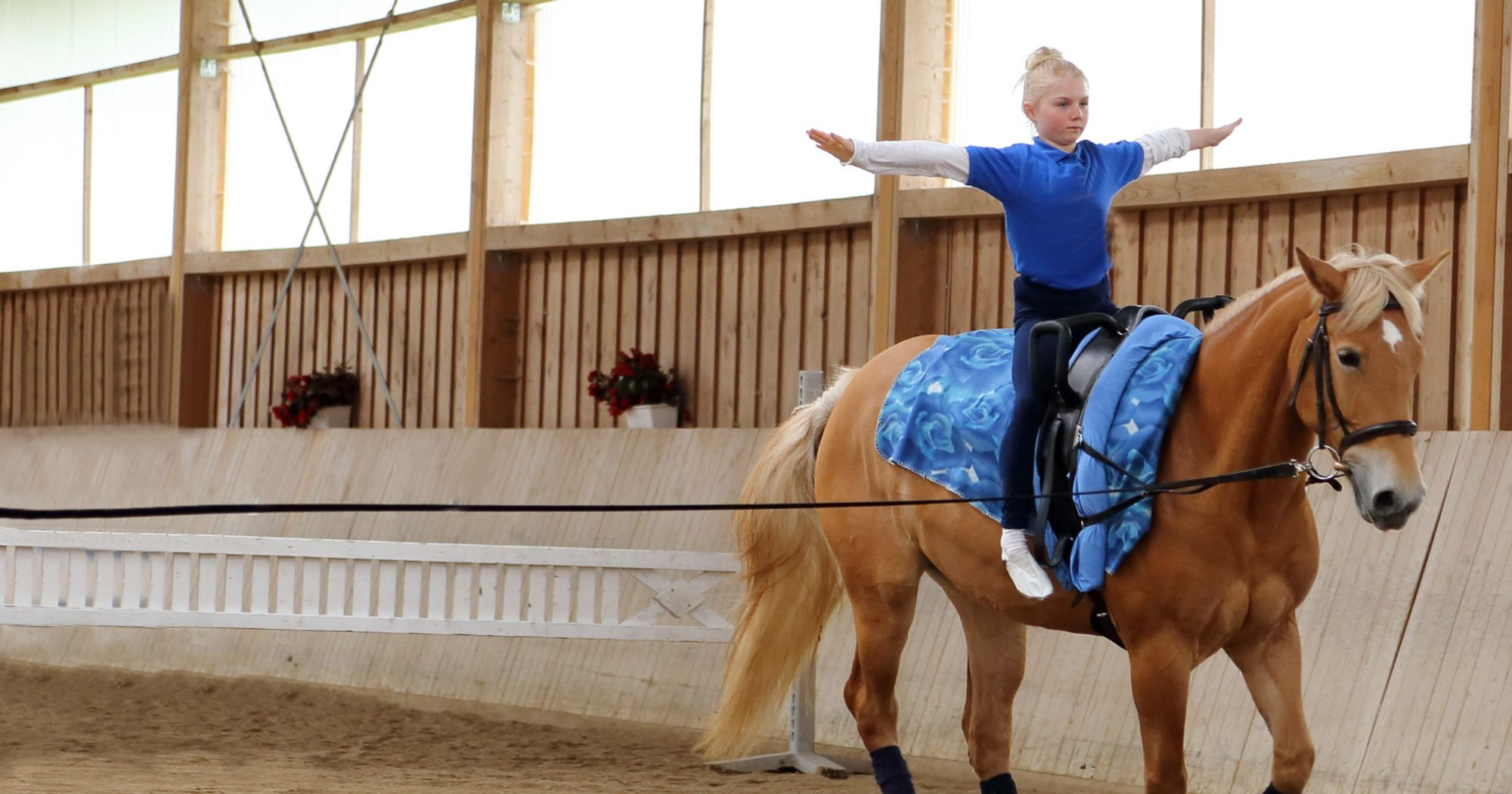 Getting Into Vaulting