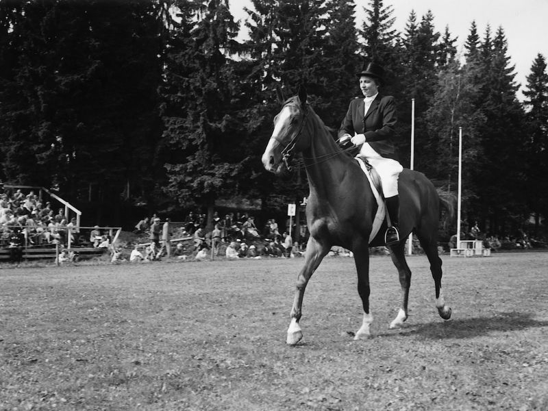 Olympic Equestrian Dressage athlete, Lis Hartel