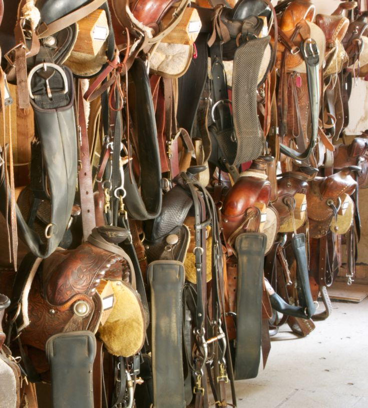 How To Create An Efficient Tack Room