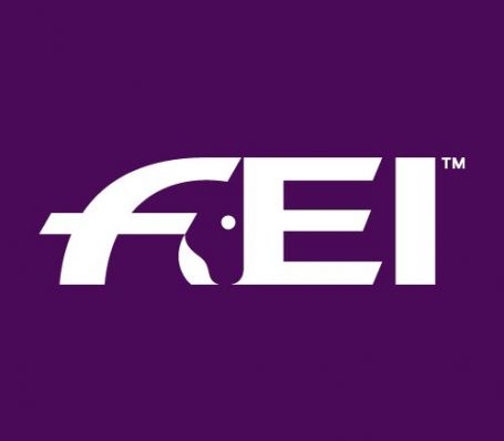 The FEI